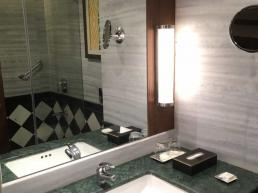 Radisson Jodhpur Hotel Bathroom